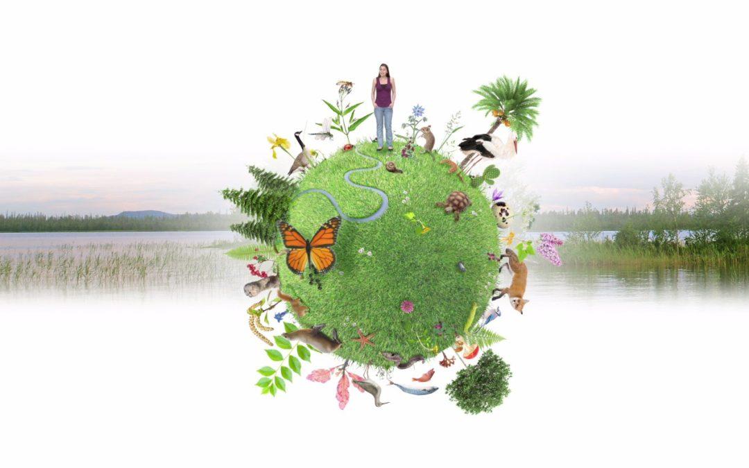 Motion relative à la protection de la biodiversité sur le territoire montois