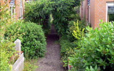 Charte de végétalisation de l'espace public